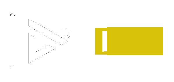 DVS LED